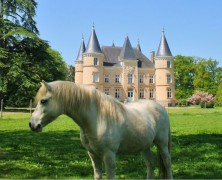 Six of the best chateaux for sale in France