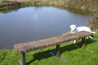 benchwoodpattern1