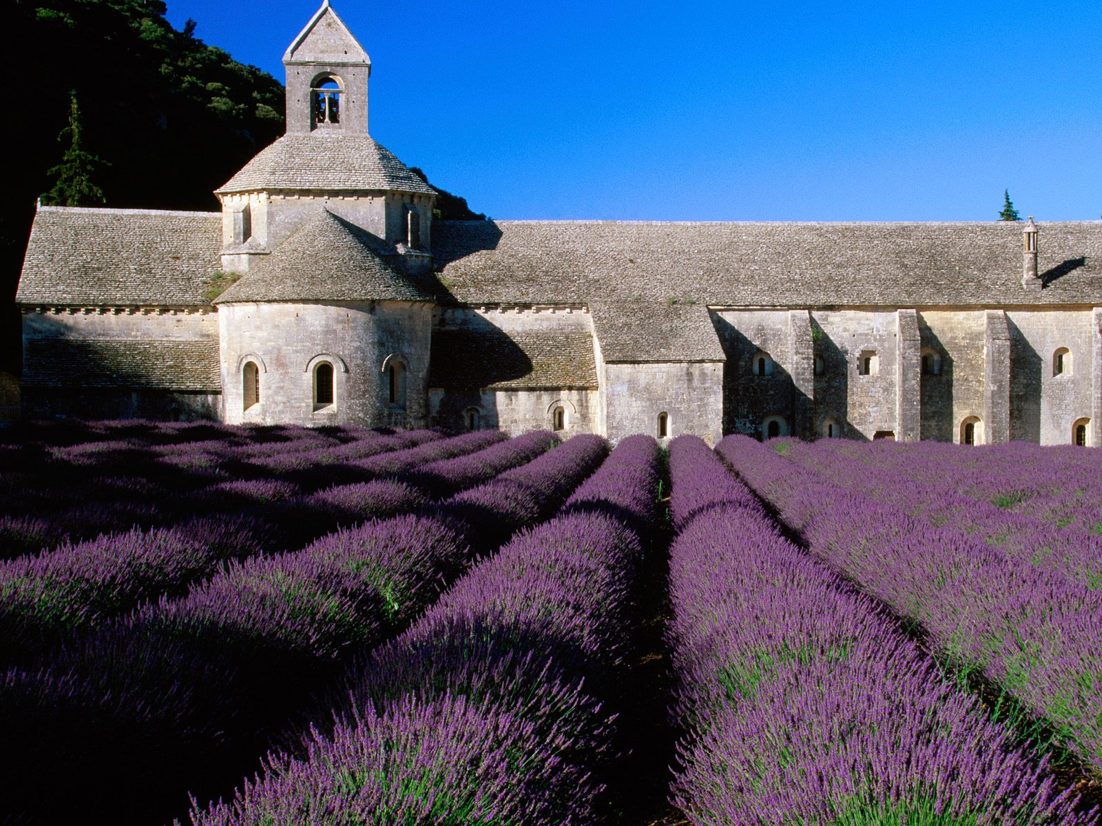 Provence Prime Property Observations Released By Home