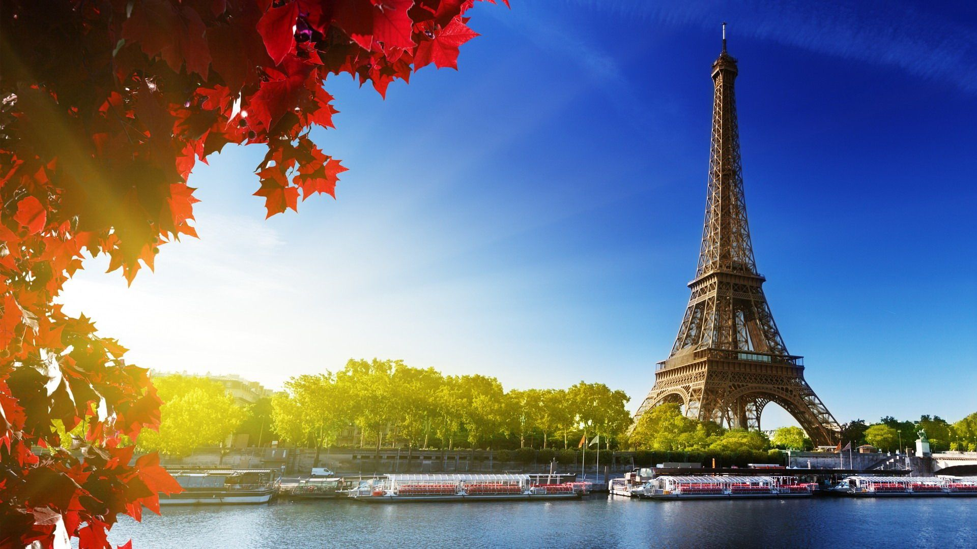 Paris is perfect for property investment