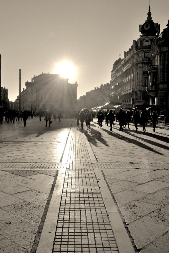 Why Montpellier is such hot property….