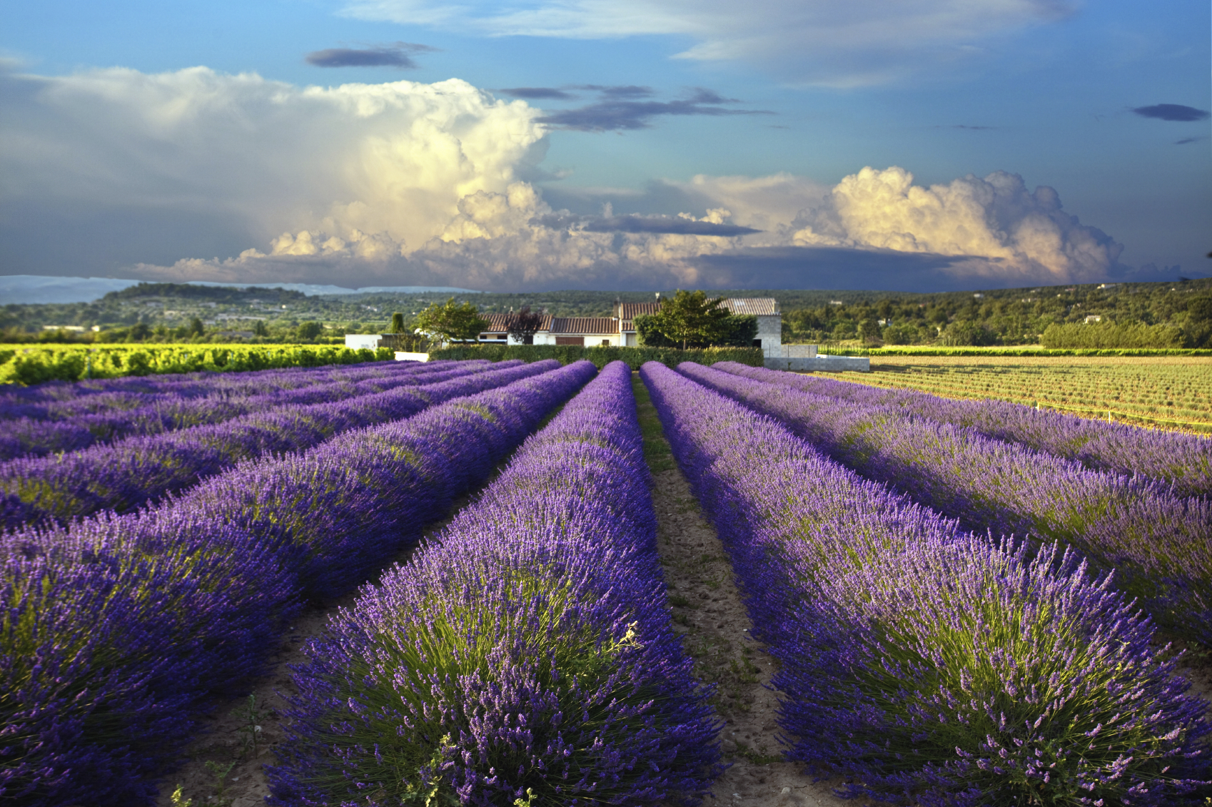Where are the best places to live in the South of France?