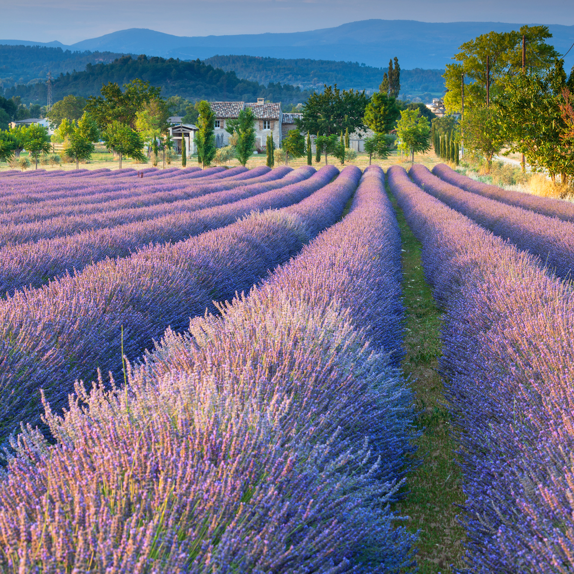 Five of the best villages to buy property in the South Luberon