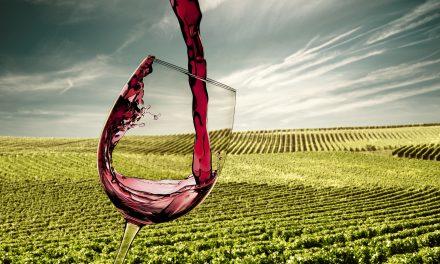 The hottest Saint Emilion vineyards for sale
