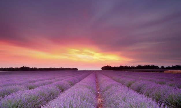 Explore some of the best villages in Provence (part two)
