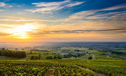 How to Have to Perfect Weekend in Bordeaux