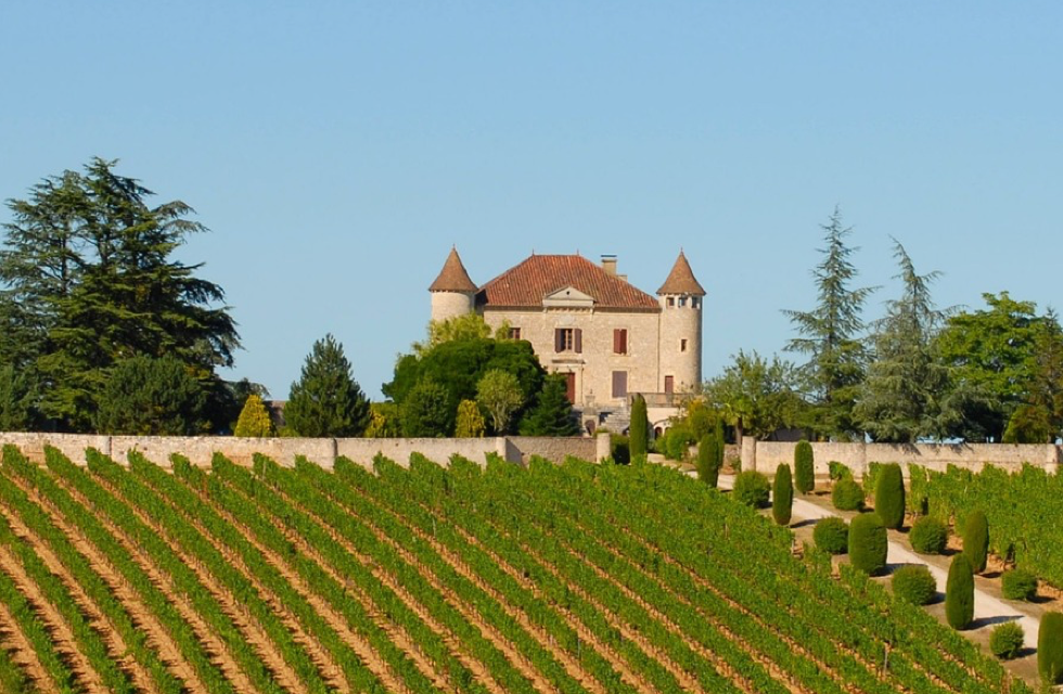 Some of the Best Vineyards for Sale in South West France