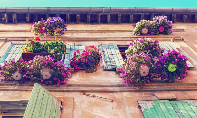 Property in France – A love affair