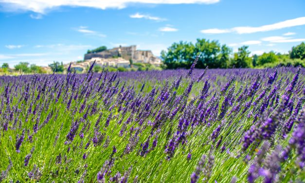Welcome to Provence! Must-See destinations in this stunning region