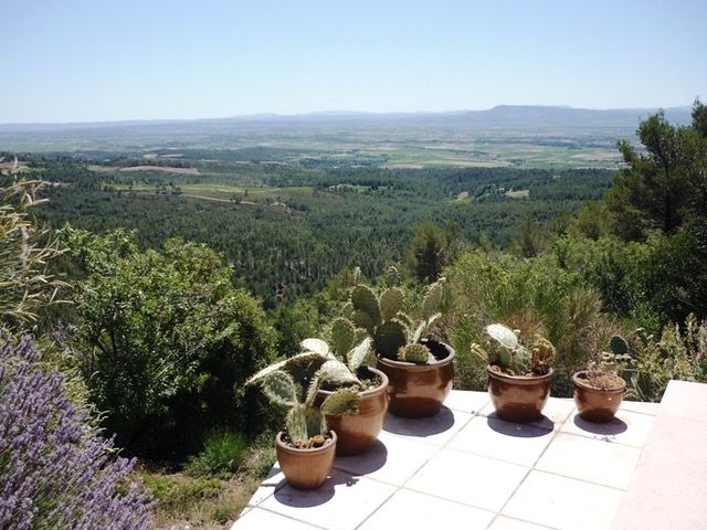 live in occitanie